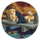 Puppies and Friends - 100pc Jigsaw Puzzle by SunsOut