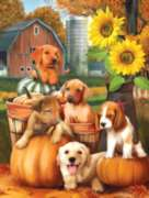 Autumn Puppies - 300pc Jigsaw Puzzle by SunsOut