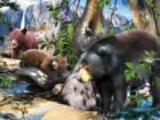Four Black Bears - 300pc Jigsaw Puzzle by SunsOut