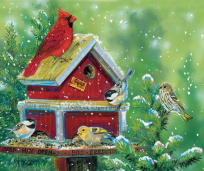 Bird Feed Store - 550pc Jigsaw Puzzle by SunsOut