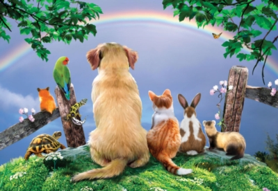 Over the Rainbow - 500pc Jigsaw Puzzle by SunsOut