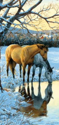 Reflections - 1000pc Jigsaw Puzzle by SunsOut