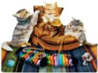 Socks and Kittens - 1000pc Shaped Jigsaw Puzzle by SunsOut