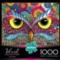 Owl Eyes - 1000pc Jigsaw Puzzle by Buffalo Games