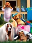 Laundry Helpers - 300pc Large Format Jigsaw Puzzle by Sunsout