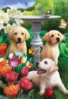 Playful Pups - 300pc Large Format Jigsaw Puzzle by SunsOut