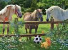 Wanna Play - 1000pc Jigsaw Puzzle by SunsOut