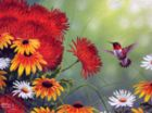 Hummingbird and Red Flower - 1000pc Jigsaw Puzzle by Sunsout