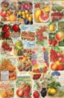 Seed Catalog: Smithsonian - Fruits - 1000pc Jigsaw Puzzle by Eurographics