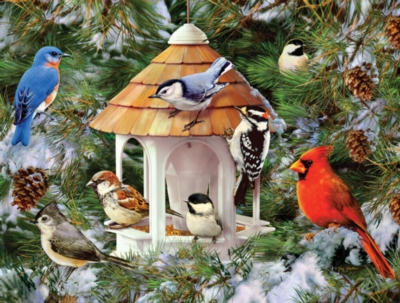 Wild Birds & Evergreens - 1000pc Jigsaw Puzzle by White Mountain