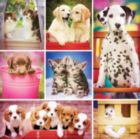 Instapaws: #BabyBesties - 500pc Square Jigsaw Puzzle By Masterpieces