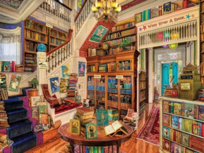 Cozy bookstore interior with cat