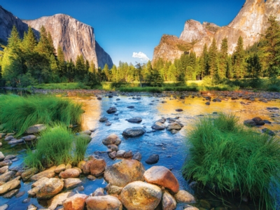 Yosemite National Park - Colorluxe - 500pc Jigsaw Puzzle by Lafayette Puzzle Factory