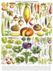 Vegetables/Legumes - 1000pc Jigsaw Puzzle by New York Puzzle Company