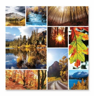 Autumn Snapshots - 1000pc Jigsaw Puzzle by Melissa & Doug