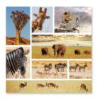 Safari Snapshots - 1000pc Jigsaw Puzzle by Melissa & Doug