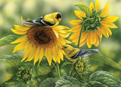 Sunflowers and Goldfinches - 1000pc Jigsaw Puzzle by Cobble Hill