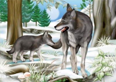 Forest Wolves - 24pc Jigsaw Puzzle by D-Toys