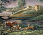 Natural Curiosity - 1000pc Jigsaw Puzzle By White Mountain