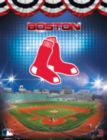 MLB: Boston Red Sox 100PC Puzzle - 100pc Jigsaw Puzzle by Masterpieces
