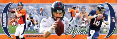 NFL: Peyton Manning - 750pc Panoramic Jigsaw Puzzle by Masterpieces