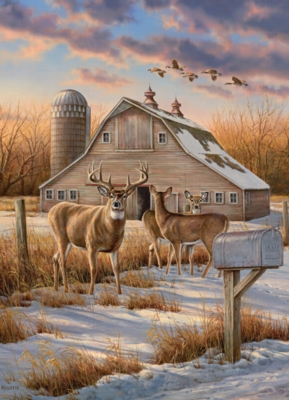 Rural Route - 1000pc Jigsaw Puzzle by Cobble Hill