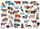 Cow Parade - 1000pc Jigsaw Puzzle by Cobble Hill