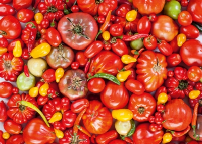 Tomatoes - 1000pc Jigsaw Puzzle by D-Toys