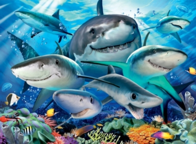 Smiling Sharks - 300pc Jigsaw Puzzle by Ravensburger