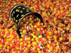 Candy Corn! - 550pc Jigsaw Puzzle by Vermont Christmas Company