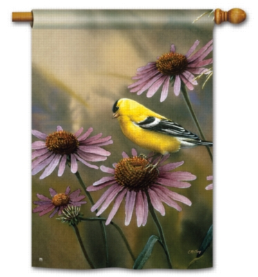 Coneflower Goldfinch - Standard Flag by Magnet Works