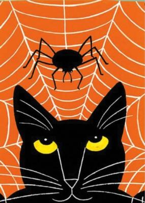 Cat & Spider - Standard Flag by Toland