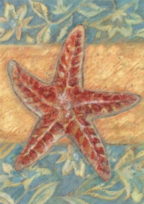 Starfish - Standard Flag by Toland