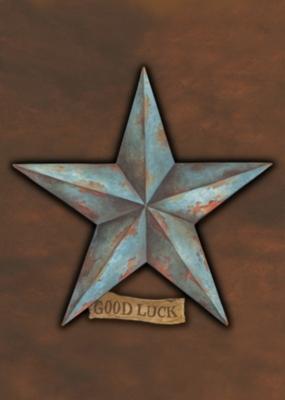 Good Luck Star - Garden Flag by Toland