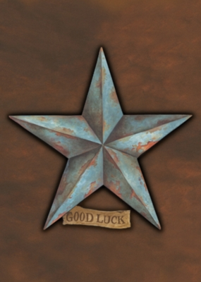 Good Luck Star - Standard Flag by Toland