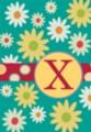 Monogram Whimsey X - Standard Flag by Toland