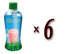 Big Train Naturals Fruit & Tea Smoothie - 32 fl. oz. Bottle Assorted Case