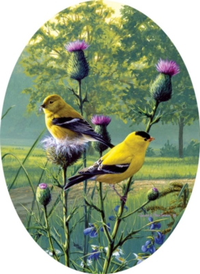 Hautman Brothers: Country Morning Goldfinches - 750pc Oval Jigsaw Puzzle by Buffalo Games