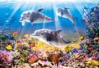 Dolphins Underwater - 500pc Jigsaw Puzzle by Castorland