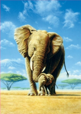 Elephants - 500pc Jigsaw Puzzle by EDUCA