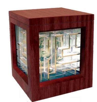 Wooden Money Maze - Money Puzzle