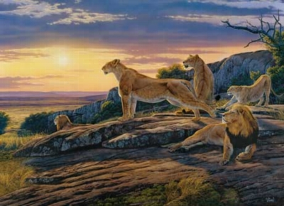 Lion's Pride - 1000pc Jigsaw Puzzle by Masterpieces