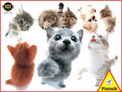 Hanadeka: Kittens - 100pc Jigsaw Puzzle by Piatnik