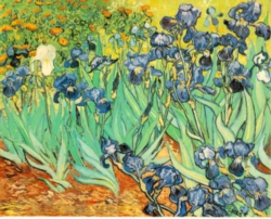 Hard Jigsaw Puzzles - Van Gogh: Irises