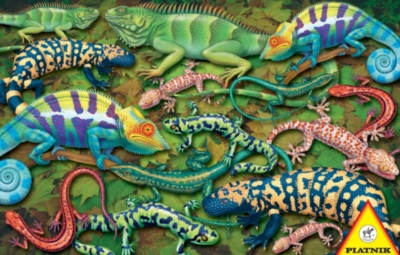 Hard Jigsaw Puzzles - Salamanders