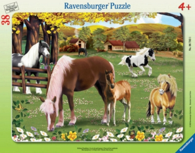 A Pony's Life - 38pc Puzzle in a Frame by Ravensburger