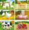 Farm - 6pc Block Children's Puzzle by Ravensburger