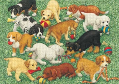 Puppy Fun - 35pc Jigsaw Puzzle by Ravensburger