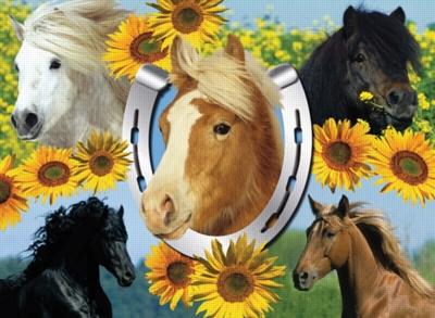Gorgeous Horses - 300pc Jigsaw Puzzle by Ravensburger