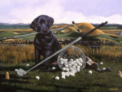 Golf Anyone? - 300pc Large Format Jigsaw Puzzle by Ravensburger